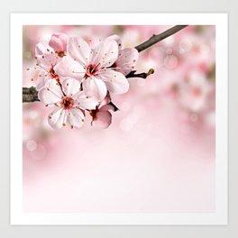 Fancy Blosssom Art Print
