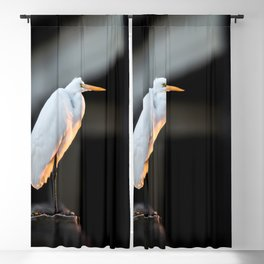 Great Egret at Sunset Blackout Curtain