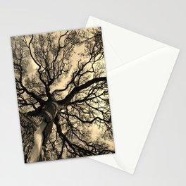 Live Oak 1 Stationery Cards