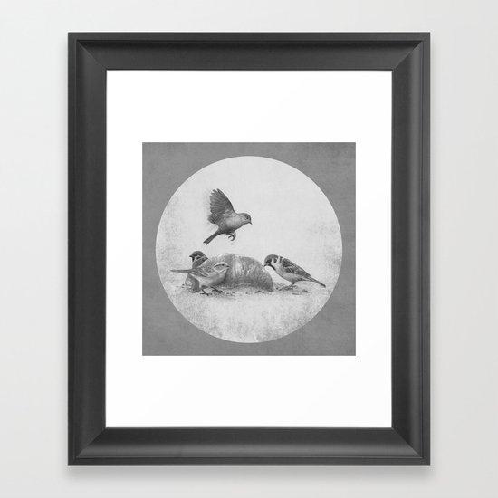 Parisian Sparrows  Framed Art Print
