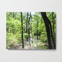 Searching for Peace Metal Print