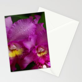 Will Always Love You Stationery Cards
