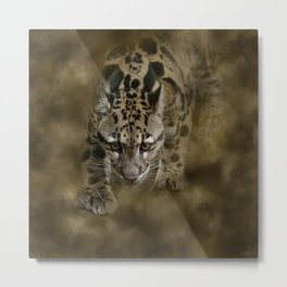 Clouded Leopard On The Hunt Metal Print