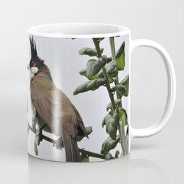 Red-Whiskered Bulbul Coffee Mug