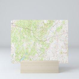 UT Salina 251643 1980 topographic map Mini Art Print