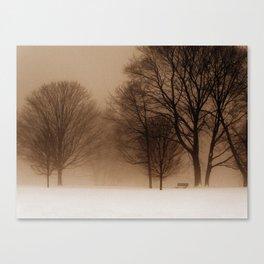 February Canvas Print