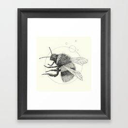 'Wildlife Analysis IX' Framed Art Print