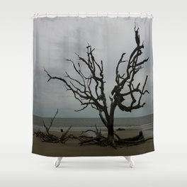 Ghost Tree Beach Shower Curtain