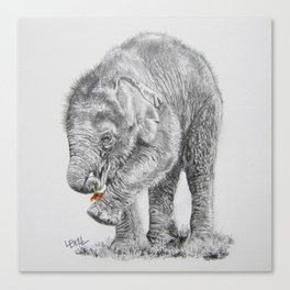 Baby Elephant with Flower Canvas Print