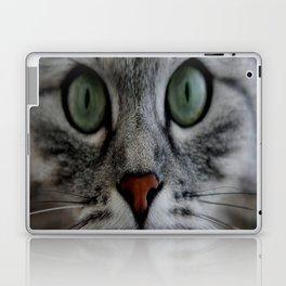 cat face eyes gray fluffy cute animals Laptop & iPad Skin