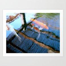 Koi Pond Reflections Art Print