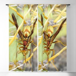 Watercolor Insect Wasp, Buzz Buzz! Blackout Curtain
