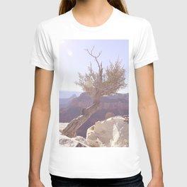 Lone Tree Grand Canyon T-shirt