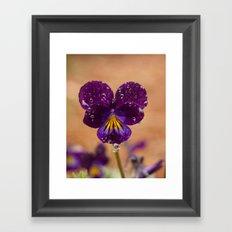 Flower after the Rain Framed Art Print