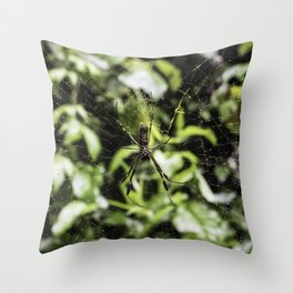 Closeup of a Very Large Spider on Its Web in the Chocoyero-El Brujo Nature Reserve, Nicaragua Throw Pillow
