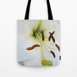 The feelers Tote Bag