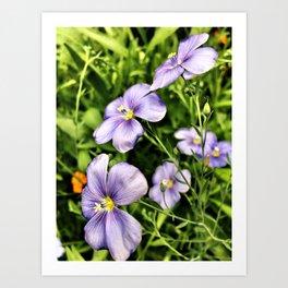Springtime Flowers Art Print