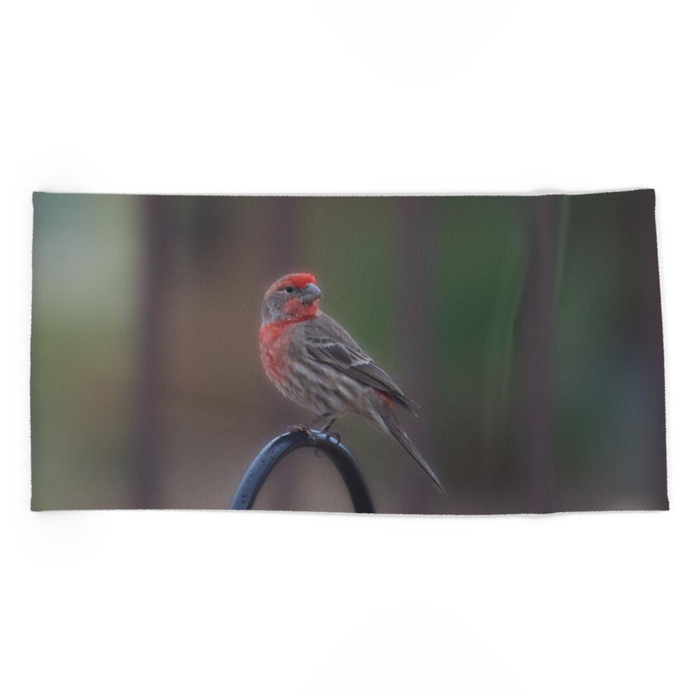 Pretty Bird - House Finch Beach Towel by alaskanmommabear (BCT6660743) photo