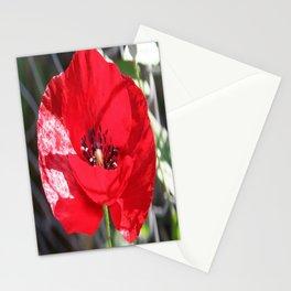 Single Red Poppy Flower  Stationery Cards