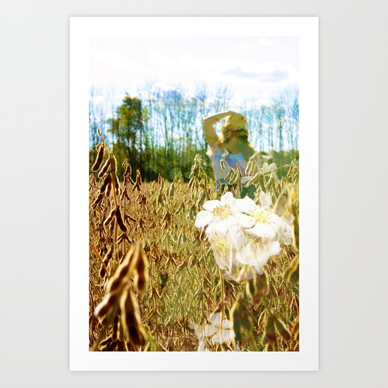 Fields Art Print
