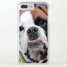 Boxer dog friend Clear iPhone Case