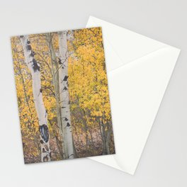 Naked Trees and Fall Leaves Stationery Cards