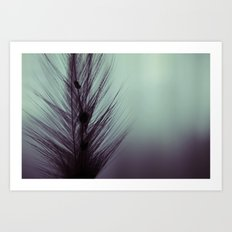 Feather's beauty. Art Print