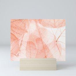 Sun Bleached Apricot Mini Art Print