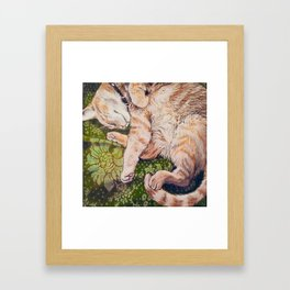 Sleeping Orange Tabby Framed Art Print