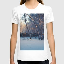Midday sun streams through the trees at the footbridge at Creamers Field T-shirt