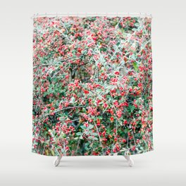 Creeping Cotoneaster Shower Curtain
