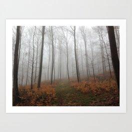 Nebel 2 Art Print