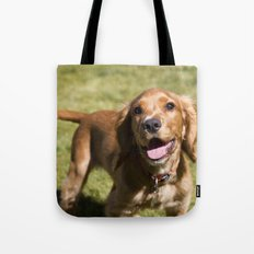 Casper the Cocker Spaniel Tote Bag