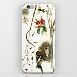 Sparrow iPhone Skin