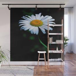 A daisy a day keeps the blues away Wall Mural