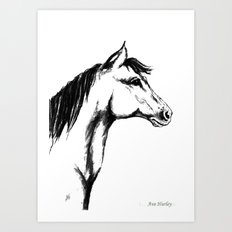 'Another Horse Profile' by Ave Hurley Art Print