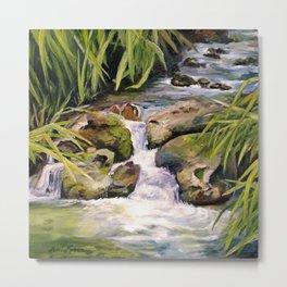 Water Oasis Metal Print