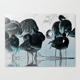 Exotic Flamingos Canvas Print