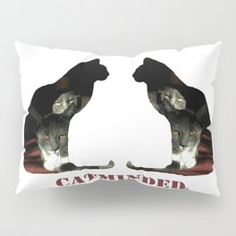 Cat minded Pillow Sham