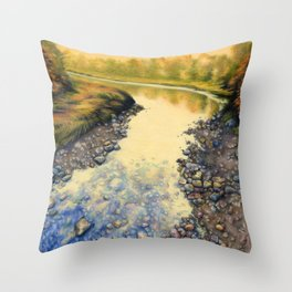 Up A Creek Throw Pillow