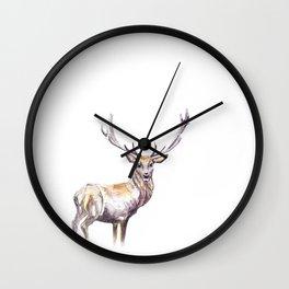 Diocletian the Diabolical Wall Clock