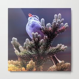 american tree sparrow sunset aesthetic bird art nature photography Metal Print