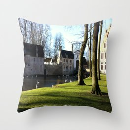 Nature and Urban Life. Throw Pillow