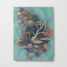Coral Communities Metal Print