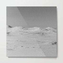 Desolate Metal Print