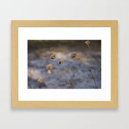 Sand Like Snow Framed Art Print