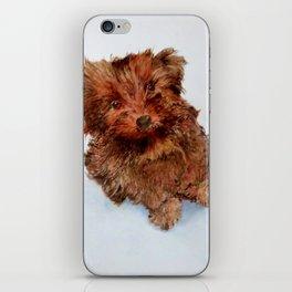 Puppy2 iPhone Skin