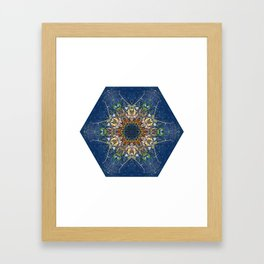 Leaves and River Mandala Framed Art Print