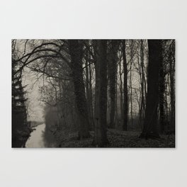 Winterscenery Canvas Print
