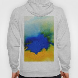 Synergy 1A8 by Kathy Morton Stanion Hoodie